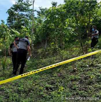 Hallan cuerpo sin vida en área montañosa de Cativá - Crítica Panamá