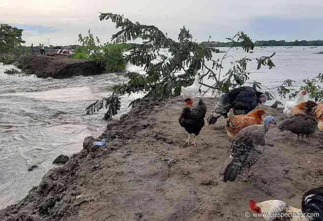 Ruptura en muro de contención genera emergencia en Barranco de Loba, Bolívar - El Espectador