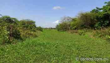 Garantizan fuentes hídricas en Salamina, San Zenón, Pivijay y Chibolo - Caracol Radio