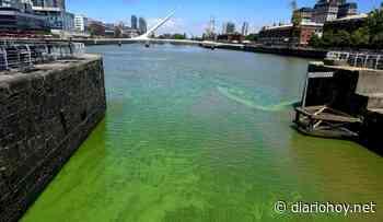 Crean una comisión para tratar la problemática de las aguas verdes en el Río de la Plata - Diario Hoy En la noticia - Diario Hoy