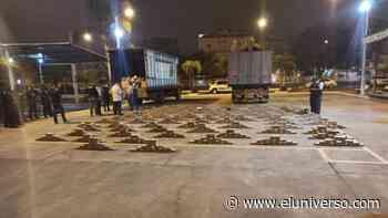 Machala: Policía detecta dos camiones cargados con 800 kilos de droga - El Universo