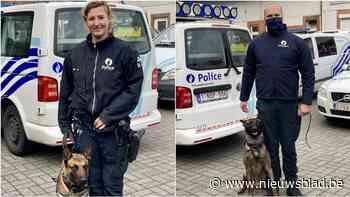 Hondenbrigades van zone Montgomery en Brussel-Noord krijgen nieuwe viervoeters
