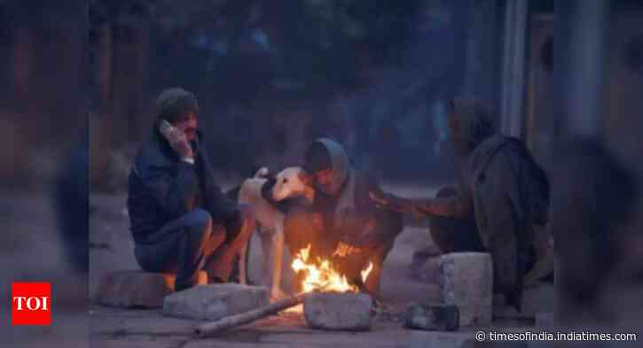 Winter chill to continue for a week, slight relief expected later: IMD
