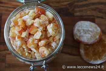 Scorze di arance candite, uno sfizio per addolcire il Natale - Leccenews24