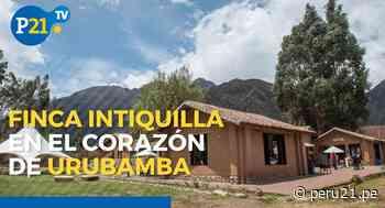 Conoce la Finca Intiquilla en el corazón de Urubamba: arte y sabor - Diario Perú21