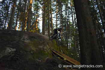 Changes are Coming to North Vancouver's Mount Seymour Trails - Singletracks.com