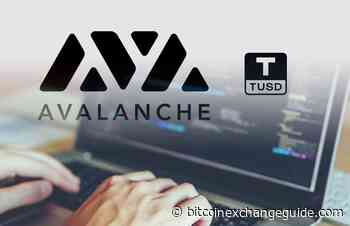 Avalanche Blockchain Integrates Dollar-backed Stablecoin, TrueUSD (TUSD) - Bitcoin Exchange Guide