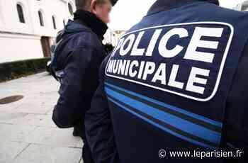 Deuil-la-Barre : l'agresseur des collégiens surpris en flagrant délit - Le Parisien