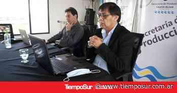 Caleta Olivia acompañó a la comunidad de Rio Gallegos en su 135° aniversario - TiempoSur Diario Digital