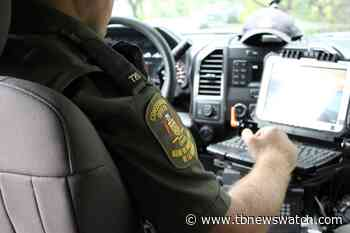 Man fined $6,500 after shooting at moose decoy near Nipigon - Tbnewswatch.com