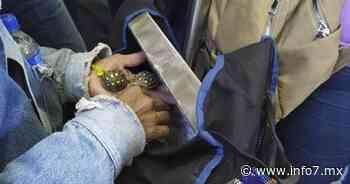 Conmueve hombre que alimenta a tortuguitas en el Metro y se hace viral - INFO7 Noticias