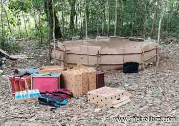 Autoridades desmantelan gallera clandestina en Gualaca - Metro Libre