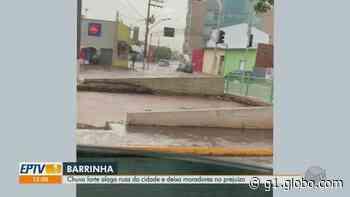 Moradores de Barrinha, SP, contabilizam prejuízo após enchente causada por temporal - G1