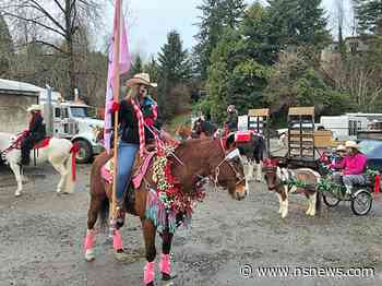 Horse parade brings holiday delight to West Van care home residents (VIDEO) - North Shore News