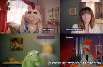 Die Muppets sind zurück: Miss Piggy hat jetzt einen Video-Blog - Stuttgarter Zeitung