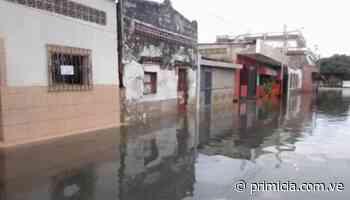 Lluvias causaron inundación en Higuerote (+Video) - primicia.com.ve