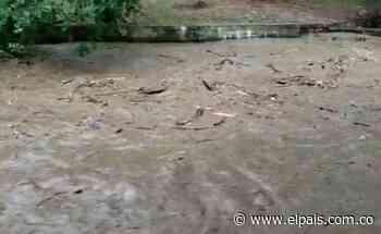 Alertan aumento de caudales de ríos en Buga y Guacarí tras fuertes lluvias - El País