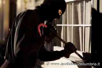 Arrestati due malviventi colti sul fatto a San Martino in Campo - www.quotidianodellumbria.it