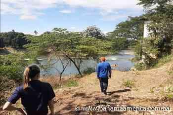 Arrojan pollos muertos al río Cacao en Macaracas, provincia de Los Santos - Panamá América