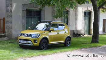 Suzuki Ignis – im Test - motorline.cc