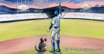In a Miserable Year, I Had the Dodgers and a Stray Dog