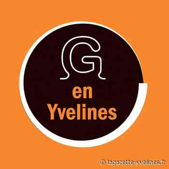 Villennes-sur-Seine - Une exposition virtuelle dédiée au confinement - La Gazette en Yvelines