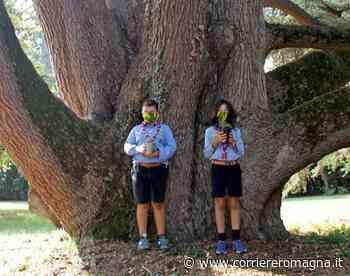 A Bertinoro c'è un piccolo albero in regalo per ogni studente - Corriere Romagna