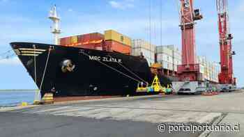 Yiport Puerto Bolívar moviliza 200 mil TEU este 2020 - PortalPortuario