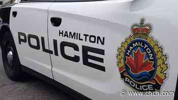 Hamilton Police investigating after dog robbery attempt - CHCH News