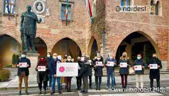 """Cividale del Friuli, il Consiglio Comunale lancia l'appello: """"dite sì al vaccino"""" - Nordest24.it"""