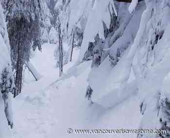 High avalanche risk across the North Shore all weekend - Vancouver Is Awesome