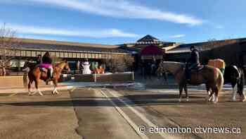 Horse enthusiasts throw parade for Tofield seniors - CTV News Edmonton