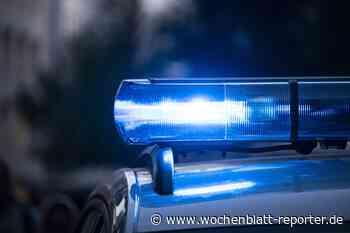 Kennzeichen-Klau in Kreimbach-Kaulbach: Dieb in Niederkirchen gefasst - Wochenblatt-Reporter
