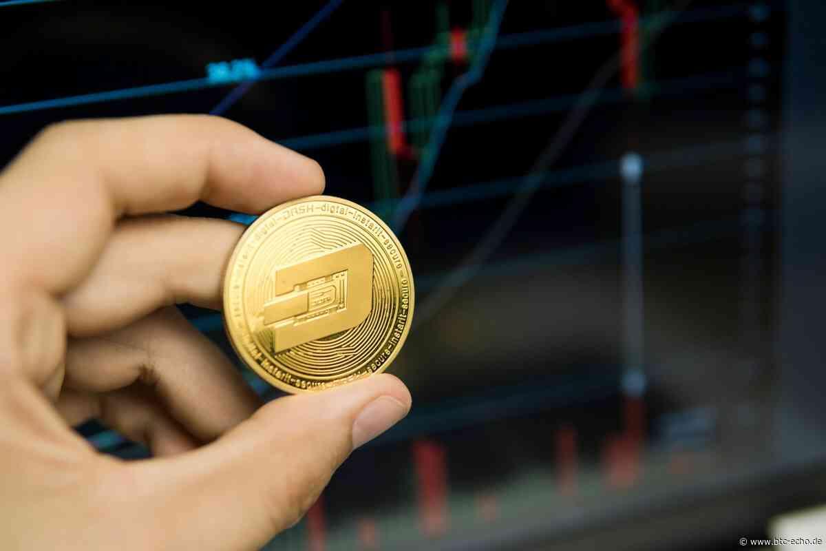 Ultimatum: Bittrex delistet Privacy Coins Dash, Monero und ZCash - BTC-ECHO