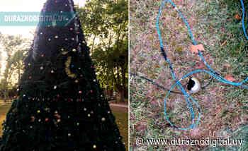 Acto vandálico en Villa del Carmen pudo tener consecuencias fatales - duraznodigital.uy
