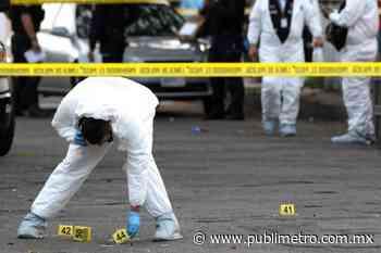 Dejan cuerpos desmembrados en Cortazar, Guanajuato - Publimetro México