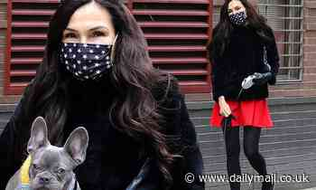 Famke Janssen shows off her fashion sense as she snuggles up with a pooch during a stroll in NYC - Daily Mail