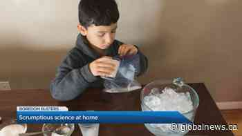 Boredom Busters: Keep kids busy with science experiments at home