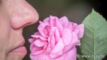 Studie zu Corona-Syptomen: Riechstörungen öfter bei mildem Covid-Verlauf