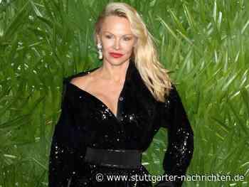 Pamela Anderson - Philosophische Gedanken zum Fall Assange - Stuttgarter Nachrichten