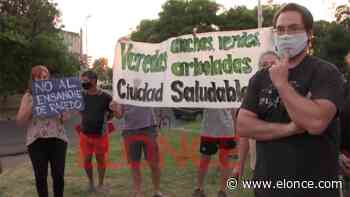 Vecinos se oponen a la tala de árboles para el ensanche de bulevar Racedo - Paraná - Elonce.com