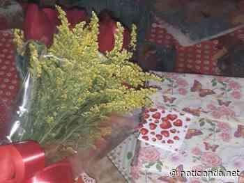 Mulher recebe bomba dentro de embrulho de flores em Francisco Morato - Rede Noticiando