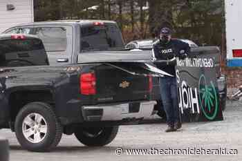 Nine arrested in drug enforcement op on Caldwell Road in Cole Harbour - TheChronicleHerald.ca