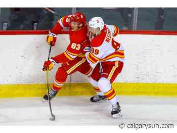 'I know what I need to do': Flames defenceman Nesterov anxious to make most of second NHL stint - Calgary Sun