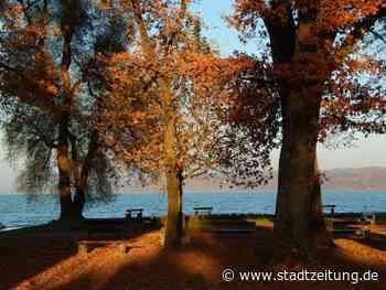 Herbstimpressionen und Abendstimmung in Diessen am Ammersee | StaZ - Mein Lesespaß für Augsburg & Schwaben - StadtZeitung