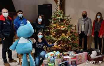 Pays de Saint-Gilles : les Rockeurs ont du Cœur collectent plus de 200 jouets pour les Restos du Cœur - actu.fr