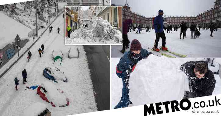 Skiers hit streets of Madrid as Spain suffers worst snowfall for 50 years