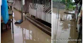Nariño: Desbordamiento del río Patía deja más de 300 familias afectadas - Radio Nacional de Colombia