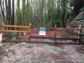 North Vancouver's Mosquito Creek Park 'east trail' closed - North Shore News
