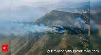 No 'active' forest fire now in Nagaland's Dzukou